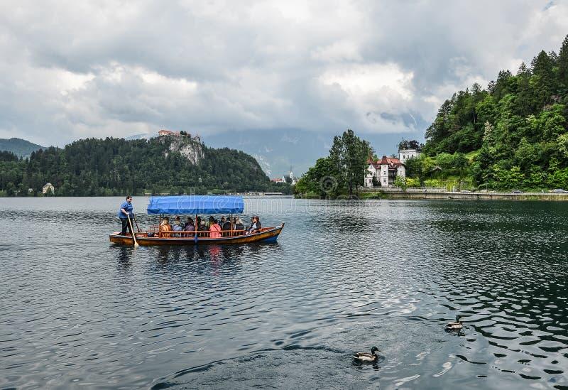 朱利安阿尔卑斯山和老木小船的美丽的布莱德湖 山、清楚的蓝绿色水、游船,湖和剧烈 免版税库存照片