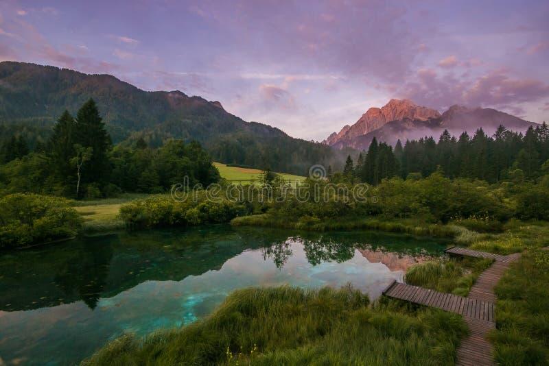 朱利安阿尔卑斯山美丽如画的夏天场面有克拉尼斯卡戈拉峰顶的在背景 Zelenci自然储备美妙的日出视图  免版税库存图片