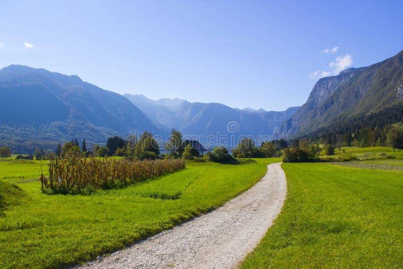 朱利安阿尔卑斯山-在流血的湖附近的全景 库存照片