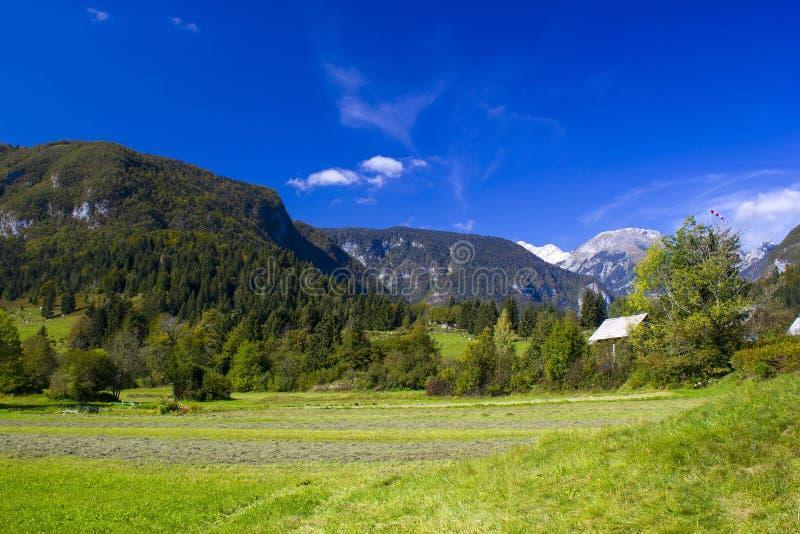 朱利安阿尔卑斯山-在流血的湖附近的全景 免版税库存图片