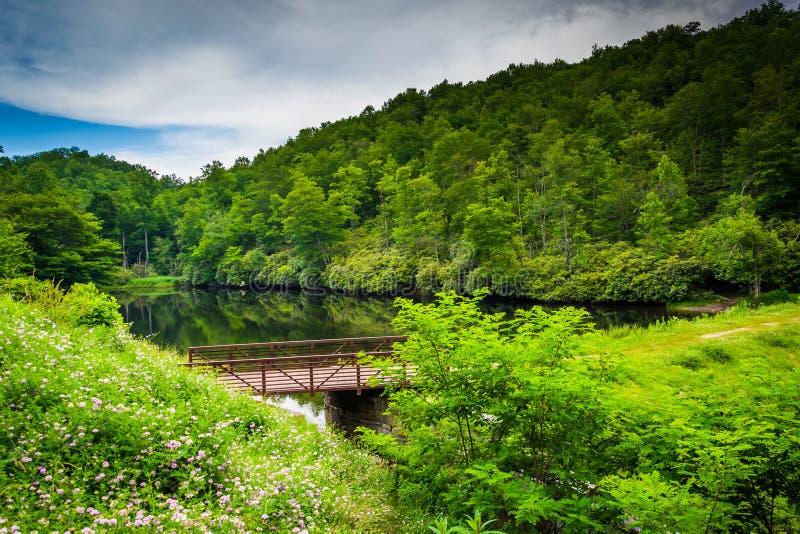 朱利安价格纪念公园的池塘,沿蓝岭山行车通道 库存图片