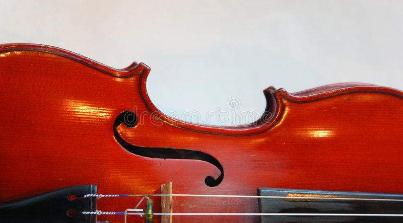 机体小提琴 免版税图库摄影