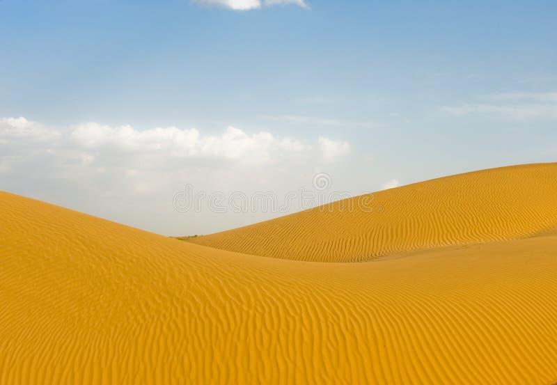 机体沙漠 免版税图库摄影