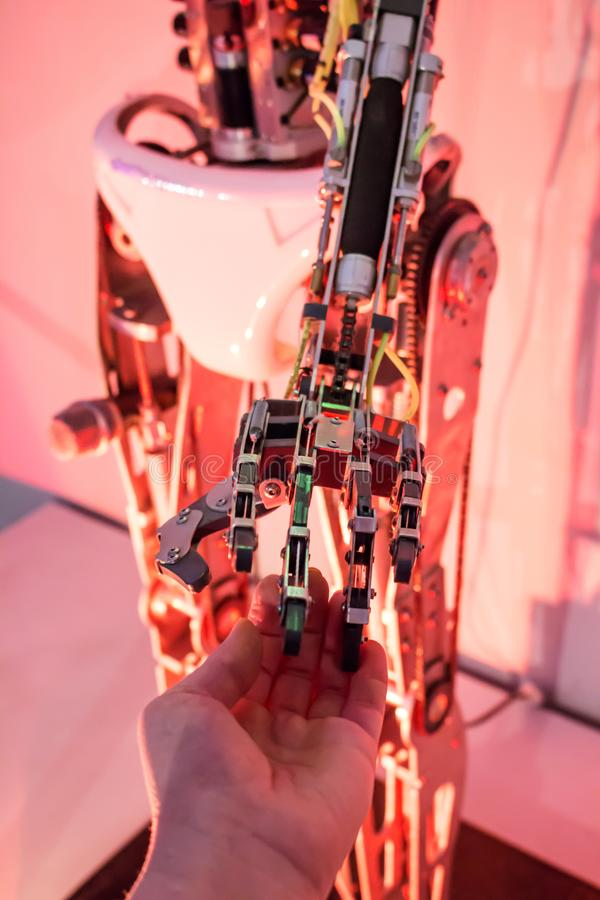机器人与人手 库存照片