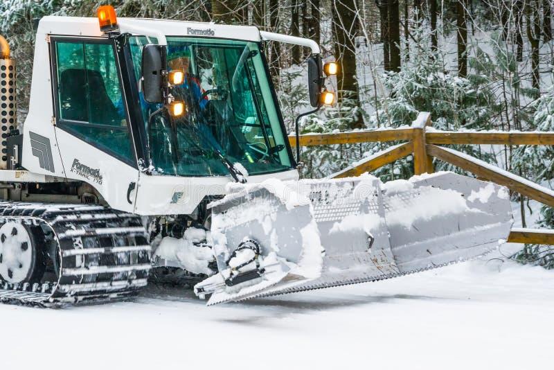 机器snowcat在具球果森林里变紧密在滑雪倾斜的雪, 库存图片