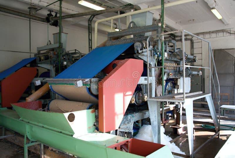 机械土豆生产淀粉 库存图片