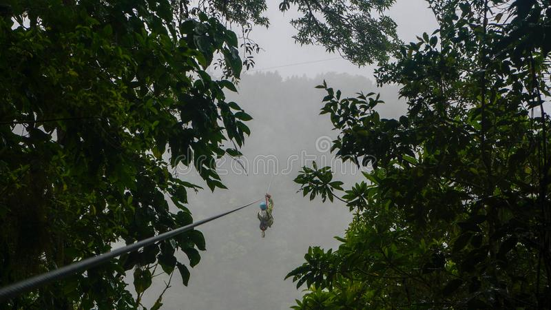 机盖/Zipline在Monteverde和圣埃伦娜,哥斯达黎加云彩森林里  库存图片