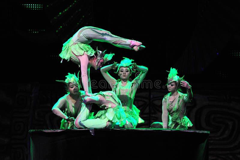 杂技艺术家北京马戏团 免版税图库摄影