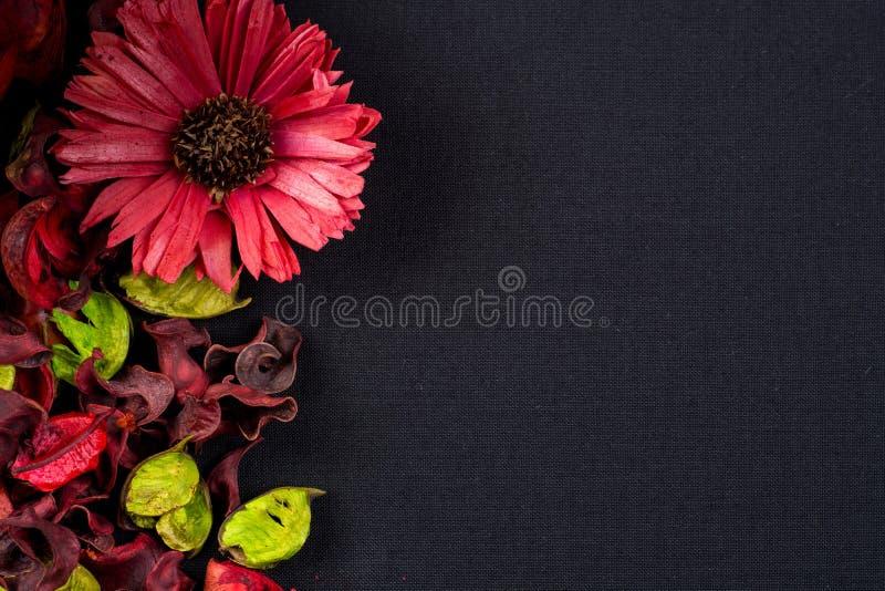 杂烩 免版税图库摄影