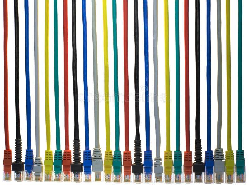 杂色的电缆接头rj45 图库摄影