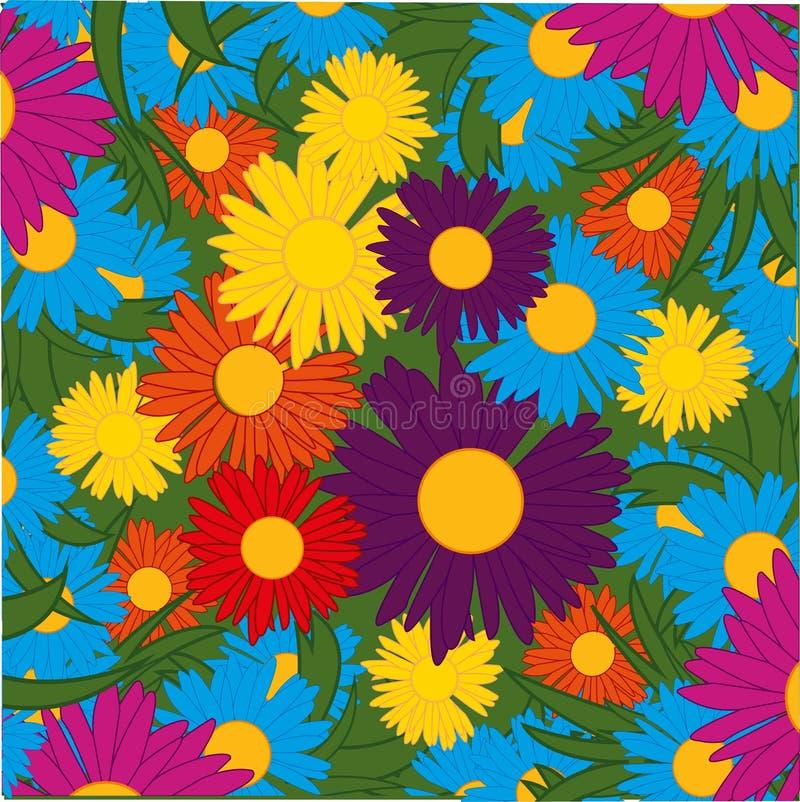 杂色的菊花轮的花 库存例证