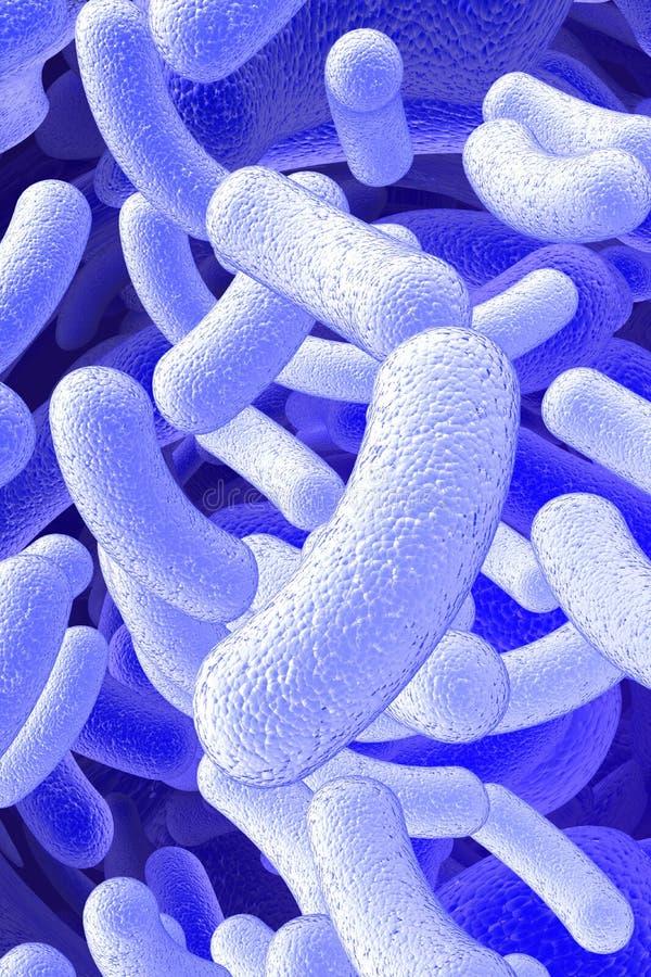 杆菌微生物 库存例证