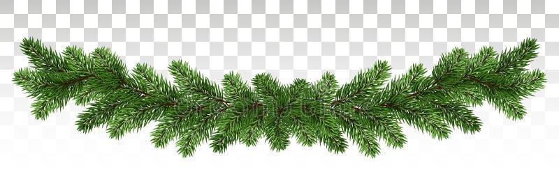 杉木分支一本长的诗歌选  杉木框架 假日冬天deco 皇族释放例证