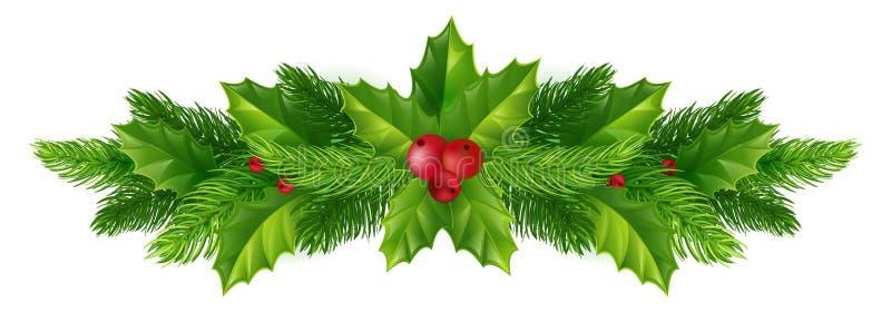 杉木分支和红色莓果在白色背景 宽基督 向量例证
