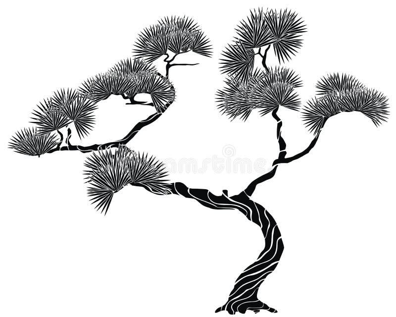 杉木剪影结构树 皇族释放例证