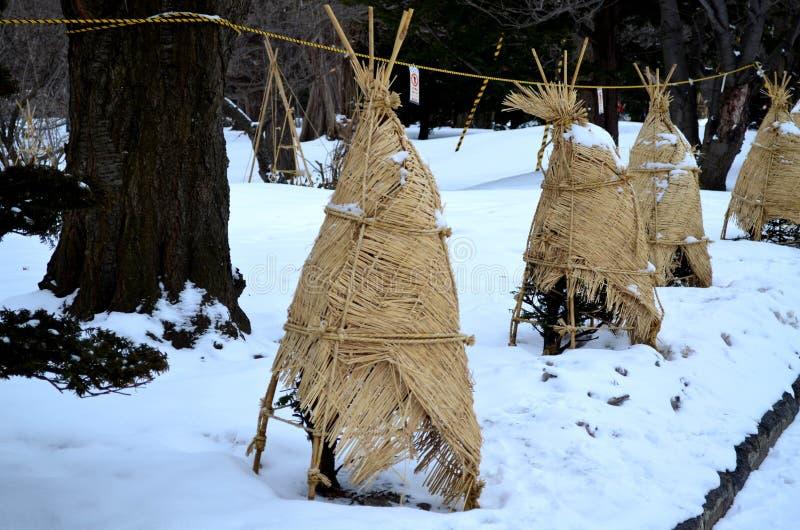 杉木包裹与织法席子和绳索雪保护的 库存图片