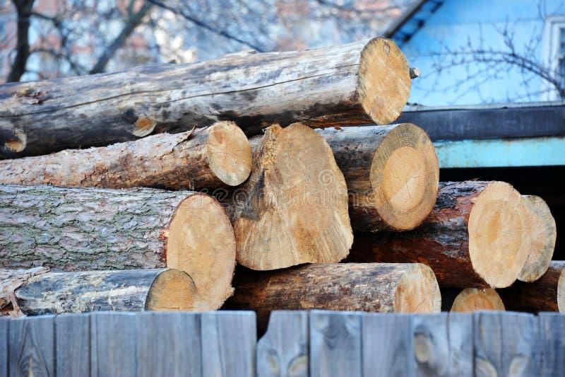杉木圆的木材 库存图片