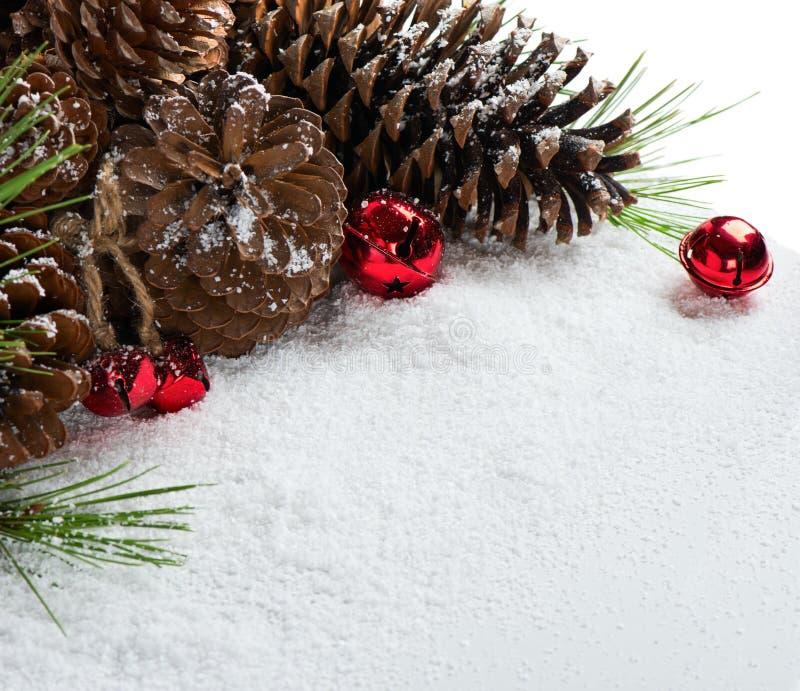 杉木圣诞节的锥体装饰 免版税库存图片