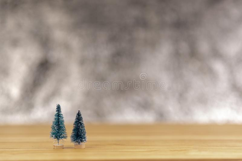 杉木圣诞节 库存图片