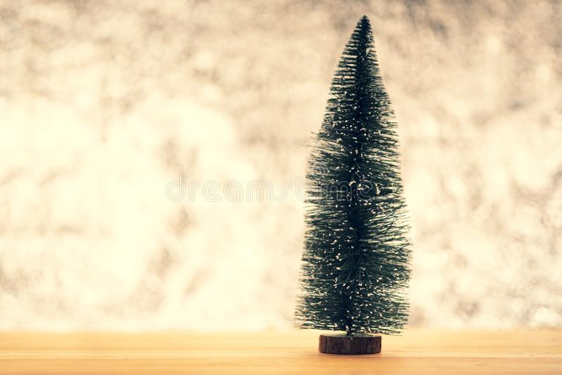 杉木圣诞节 图库摄影