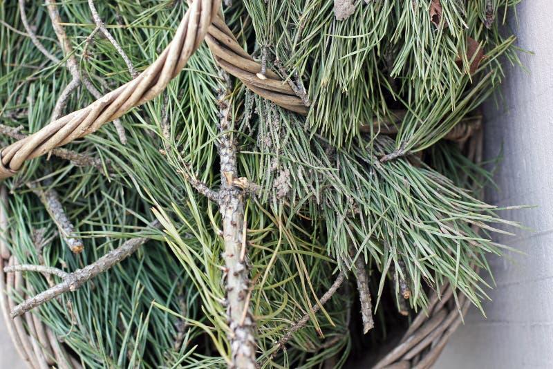 杉木在篮子needles 免版税库存图片