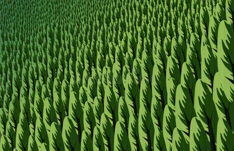 杉木森林例证在春天 免版税库存照片