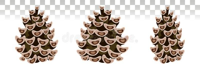 杉木锥体集合 植物的传染媒介例证 被隔绝的pinecone 向量例证
