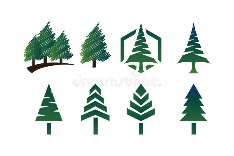 杉树的汇集 向量例证