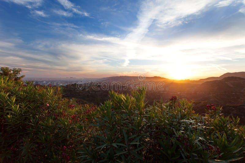 洛杉矶,从格里斐斯公园的看法日落的,南加利福尼亚好莱坞Hills的 库存照片