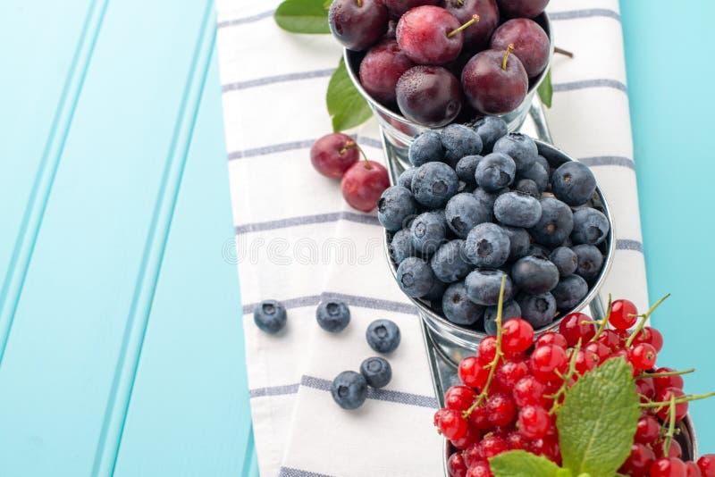 李子、红浆果和蓝莓在小金属用桶提 免版税库存照片