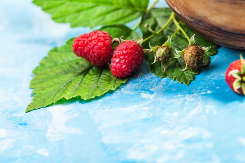 李子和红草莓特写镜头静物画与绿色叶子 库存照片
