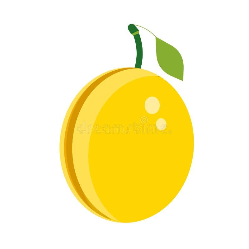 李子黄色健康成熟夏天植物 绿色鲜美饮食传染媒介象 果子食物例证有机莓果 向量例证