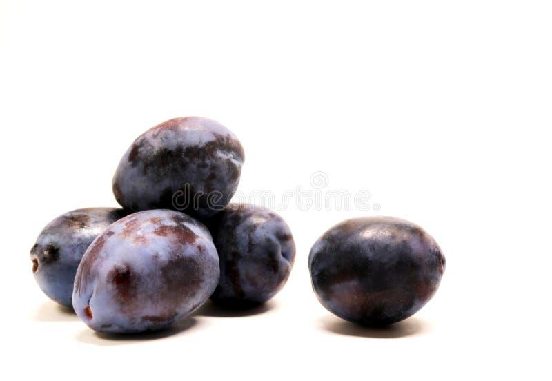 李子 庭院李子 成熟果子李子 成熟有用的果子 卓有成效的文化 饮食产品 干果子的成份,果酱, 库存图片