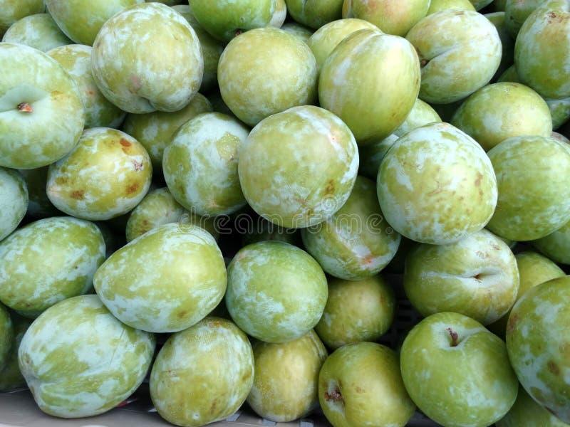 李属salicina '鲜绿色好漂亮的东西或人'日本李子 免版税库存照片