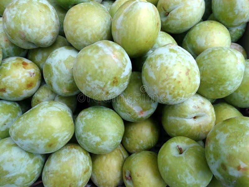 李属salicina '鲜绿色好漂亮的东西或人'日本李子 免版税库存图片