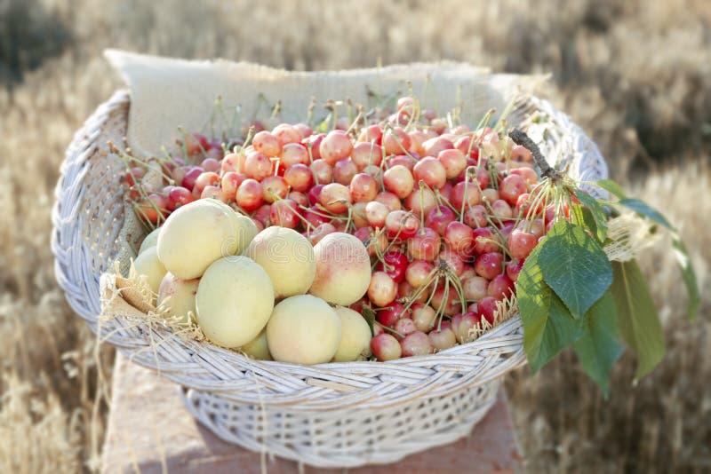 杏子和樱桃在篮子 图库摄影