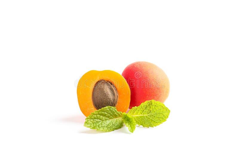 杏子用被隔绝的薄菏 免版税图库摄影