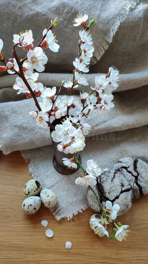杏子美好的白色开花的分支在一个花瓶在天然纤维和清淡的木表面和果仁巧克力曲奇饼的用鹌鹑 免版税库存照片