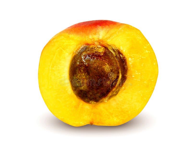 杏子被剪切的新鲜 免版税库存图片