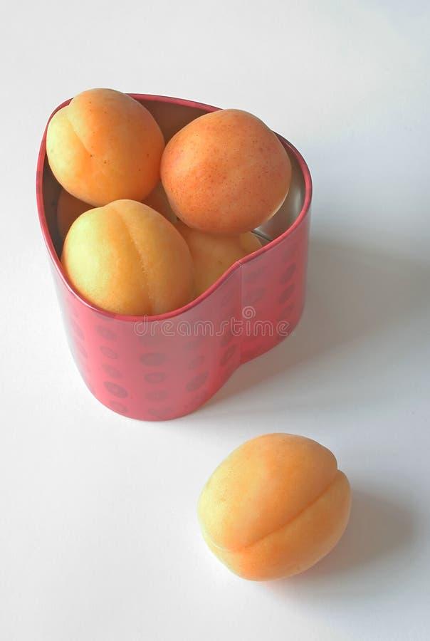 杏子重点 免版税库存图片