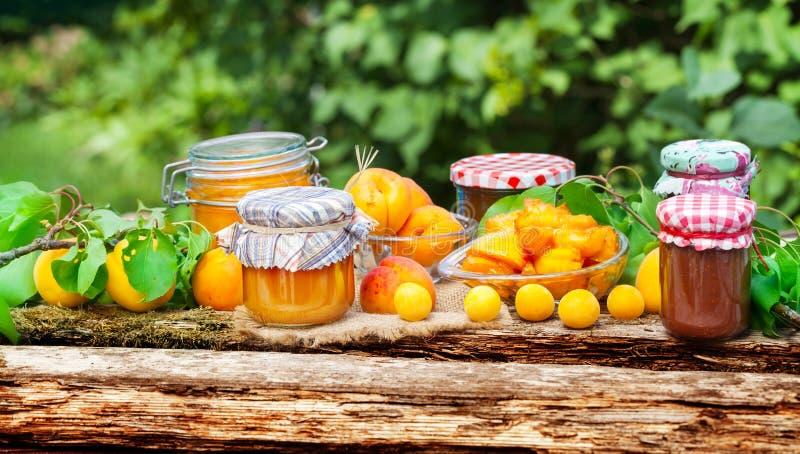 杏子,布拉斯李树,果酱 库存图片