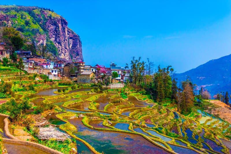 村庄在有传统议院和米大阳台的中国南方 免版税库存图片