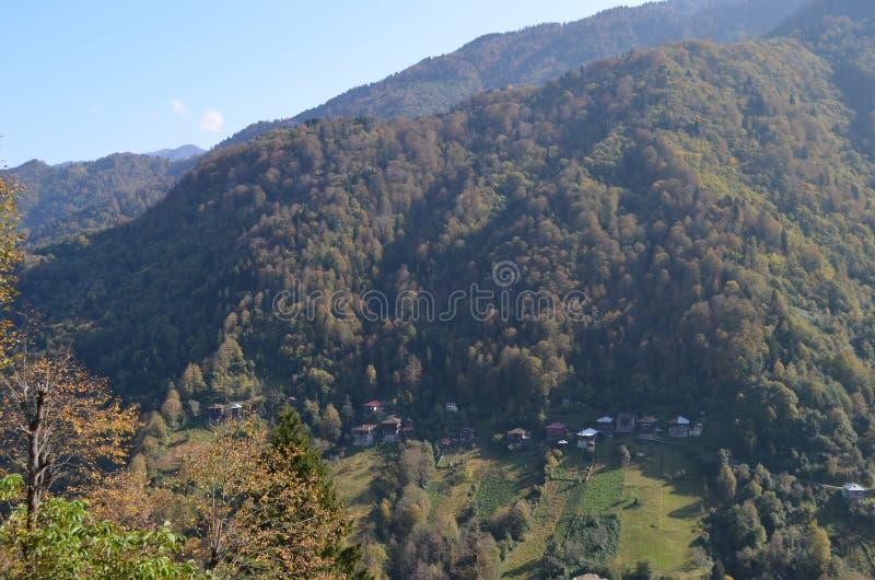 村庄在森林,黑海,土耳其里 库存照片