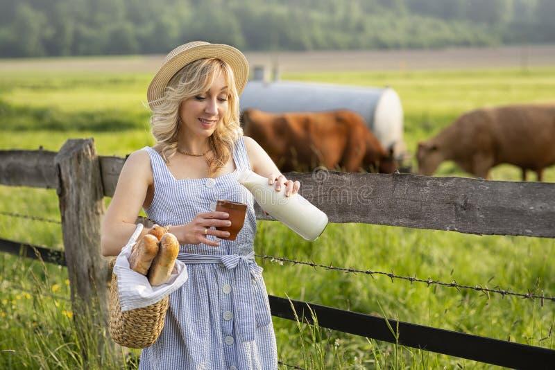 村庄女孩倾吐的牛奶到一块玻璃里,在领域背景与吃草母牛的 夏天农村生活在德国 库存照片