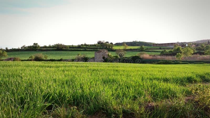 村庄废墟在卡塔龙尼亚的乡下 免版税图库摄影