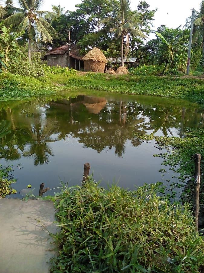 村庄池塘美好的自然场面 免版税库存图片