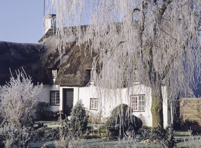 村庄盖了冬天 免版税图库摄影