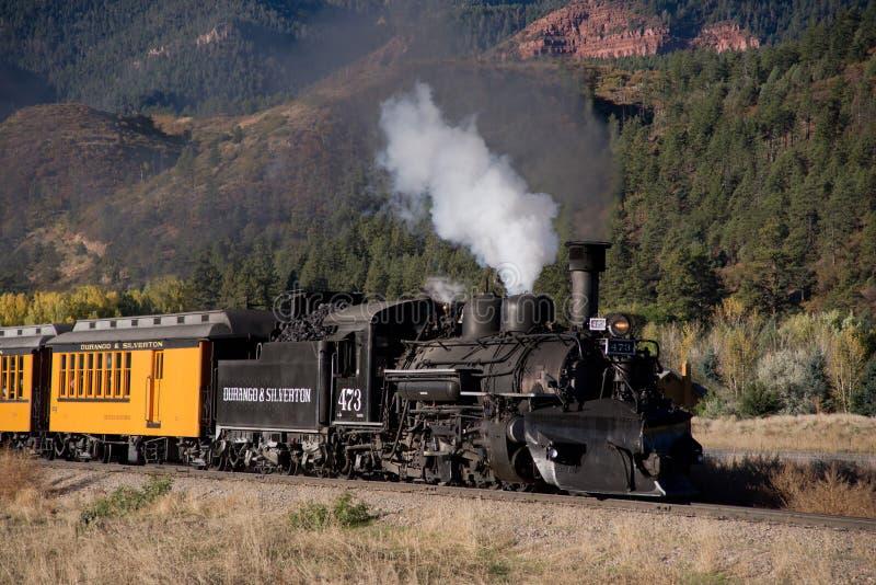 杜兰戈蒸汽火车 库存照片