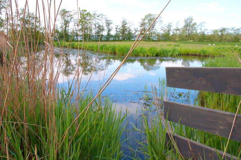 杜希特的真实场景 蓝天绿草水 库存图片