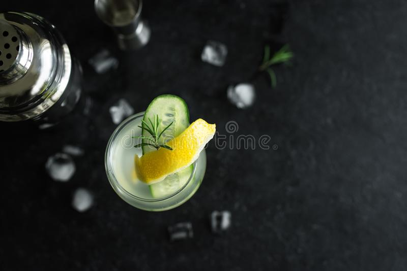 杜松子酒嘶嘶响鸡尾酒 免版税图库摄影